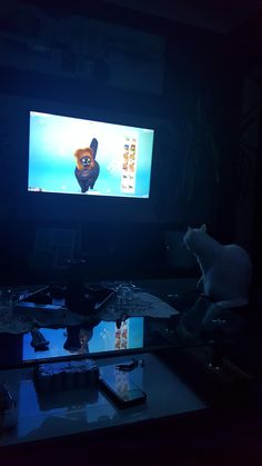 My cat watching sims 4 on confused. Instagram And Snapchat, Mood Instagram, Snapchat Picture, Applis Photo, Fake Photo, Creative Instagram Stories, Instagram Story Ideas, Girl Photo Poses, Girl Photos
