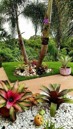 9 Portentous Tricks: Front Garden Ideas Country large backyard garden how to grow.Gravel Garden Ideas Fun large backyard garden how to grow. Florida Landscaping, Tropical Landscaping, Landscaping With Rocks, Modern Landscaping, Outdoor Landscaping, Front Yard Landscaping, Outdoor Gardens, Landscaping Ideas, Backyard Ideas