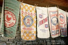 These are feed sacks with the logo of the feed. These are not usable for clothing, but could be pressed into service for other household projects: dirty clothes bag, etc. Burlap Sacks, Feed Bags, Grain Sack, Vintage Textiles, Sewing Clothes, Paper Shopping Bag, Sewing Projects, Sewing Tips, Quilts
