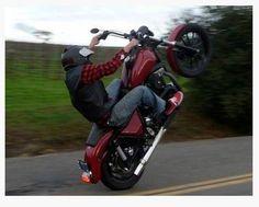 Harley Davidson! Wheelie nation!