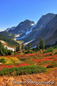 Fall On Cascade Pass, North Cascades National Park, Washington