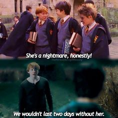 Ron's view of Hermione. 1st movie to the 7th.