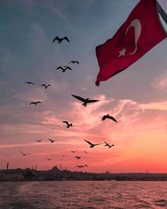 Book Istanbul Tours Directly From a Local Tour Guide. Find Your Istanbul Tour Guide Istanbul Tours, Istanbul City, Istanbul Travel, Gucci Wallpaper, View Wallpaper, Turkish Army, Local Tour, One Word Art, Wallpaper Iphone Disney