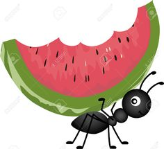 Watermelon Images, Stock Pictures, Royalty Free Watermelon Photos ...