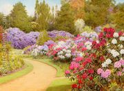 The Rhododendron Walk  by George Marks
