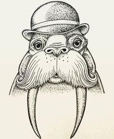 Newest illustration done for @wojophotographics #walrus #walrusdrawing by wookiejeebus