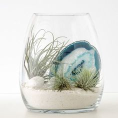 Your terrarium escape to the dazzling white sands and indigo waters of the Aegean Sea, featuring a stunning slice of blue lace agate crystal. This terrarium contains: Glass belly vase x Tillandsia airplants) Blue agate crystal White quar