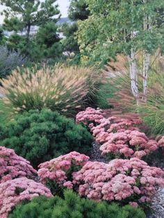 Hillside Landscaping, Outdoor Landscaping, Front Yard Landscaping, Back Gardens, Outdoor Gardens, Landscape Design, Garden Design, Easy Garden, Shade Garden