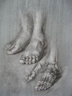 Human Anatomy Drawing, Human Body Anatomy, Human Figure Drawing, Figure Drawing Reference, Anatomy Art, Anatomy Reference, Leg Anatomy, Anatomy Sketches, Body Sketches