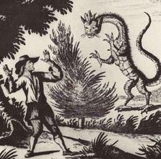 A dragon drawn by the swiss geologist Johann Jakob Scheuchzer