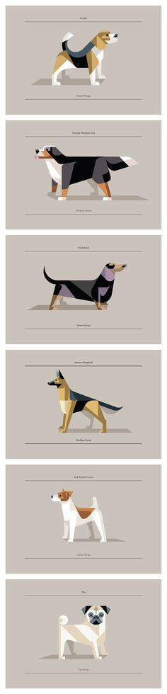 Lumadessa: Canine Collection