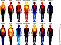 Body heat map shows how we feel different emotions Image Elephant, Shiatsu, Heat Map, Different Emotions, Body Love, Human Emotions, Angst, Health Facts, Holistic Healing