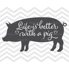 Pig Png, Pig Showing, Pot Belly Pigs, Showing Livestock, Mini Pigs, Pig Farming, Pet Pigs, Pig Party, This Little Piggy