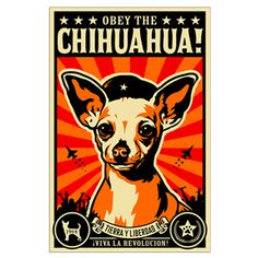 Obey the Chihuahua! Revolution Posters