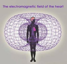 The Hara Dimension: The Torus, the Zero Point Energy Field = Creation Story - page 17 Amor Universal, Zero Point Energy, Kundalini, Electromagnetic Field, Everything Is Energy, Human Heart, Quantum Physics, Anatomy And Physiology, Sacred Geometry