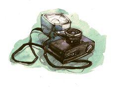 Illustrations by Alexandra Bezrukova
