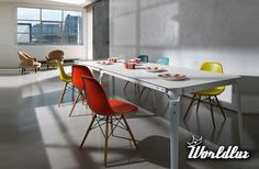 modern interior colorful chairs