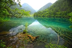 【九寨溝】中国の四川省北部。水が青く、済んでいる美しい湖水地帯。ユネスコ世界遺産に登録されている。Jiuzhaigou Valley Scenic and Historical Interest Area, China.