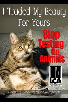 STOP TESTING ON ANIMALS! You'd be surprised to know who tests on animals.