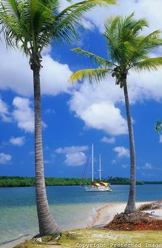 Sailing anchored on a beautiful tropical beach, Marau Peninsula -Brazil