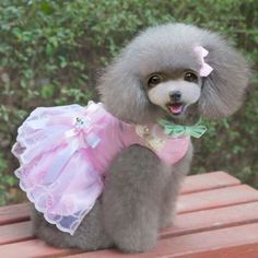Details about  Cute Dog Party Wedding Dress Dog Pet Puppy Clothes Clothing Doggy Apparel Dress