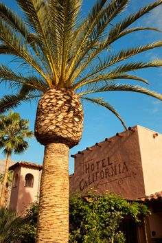 Hotel California 424 E Palm Canyon Drive, Palm Springs, CA 92264