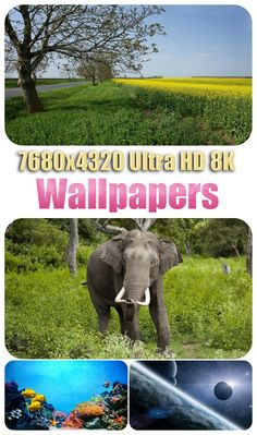 7680x4320 Ultra HD 8K Wallpapers 38