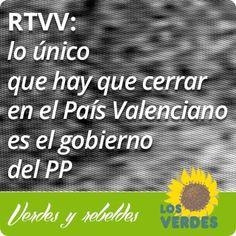 Los Verdes llevan al Parlamento Europeo el cierre de RTVV