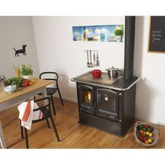 Trouvez le meilleur prix pour Cuisinière à bois Godin Promes parmi nos offres!