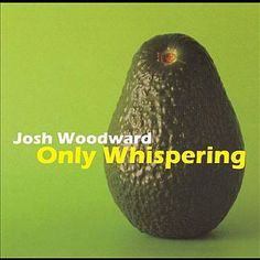 I just used Shazam to discover Goodbye To Spring by Josh Woodward. http://shz.am/t122414807