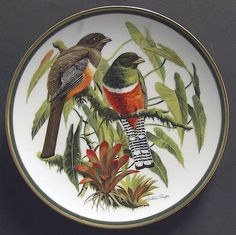 Franklin Mint Woodland Birds Of The World: Collared Trogon - Artist: Arthur Singer