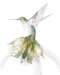 Lovely Hummingbird illustration   ZsaZsa Bellagio