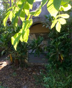 Portal antiguo .Asuncion -Paraguay