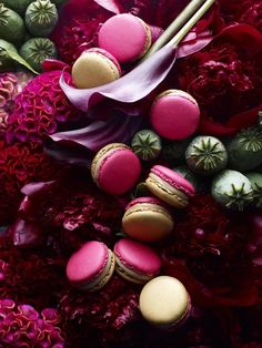 Pierre Hermé Eight Treasures macarons