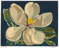 Magnolia (a. Magnolia Blossom) by William Seltzer Rice Linocut Prints, Poster Prints, Plant Painting, Botanical Flowers, Arts And Crafts Movement, Typography Prints, Woodblock Print, Flower Art, Block Prints