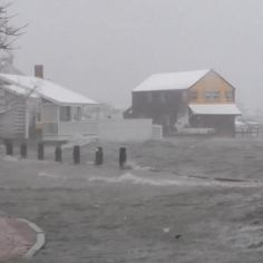 Nantucket 1/27/15 Juno Vine by Matt Turer  Click on the picture for a video, you have to click again on the second pix