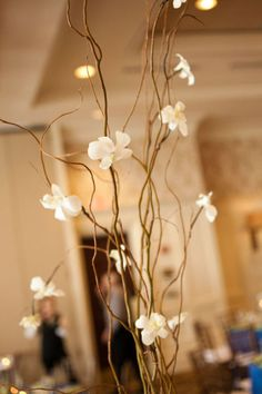 Curly willow & orchids for some of the centerpieces