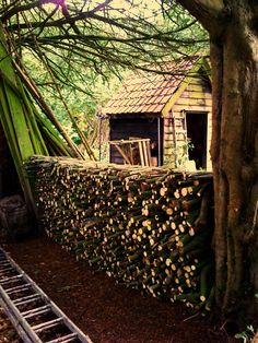 check out the log pile Stacking Wood, Wood Store, Norwegian Wood, Firewood Storage, Wood Shed, Got Wood, Woodland Garden, Cabins And Cottages, Garden Inspiration