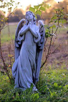 like the angel