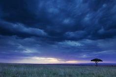 Beautiful shot of the Mara ecosystem in Kenya