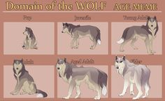Faust's Aging Stages by Tazihound on @DeviantArt