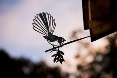 Add a bird silhouettes from Metalbird to your own landscape or give on as a gift. View the collection and get one today. Bar Design, Design Studio, Wood Design, Cutting Edge Stencils, Karim Rashid, Great Horned Owl, Kiwiana, Metal Birds, Bird Silhouette