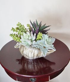 Flower Arrangement, Succulents, Sea Shell Arrangement, Artificial Succulents, Unique Arrangement, Center Piece, Small Arrangement