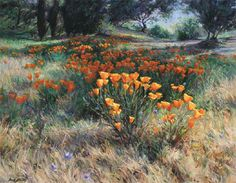 """Art Of The West  Daniel Mundy   (California):                 A Field In Bloom   Oil   24"""" By 30""""   Feartured in: 2012 May/June Issue     A few years ago, I happened on this field of poppies in late afternoon light. I jumped out of the truck, threw up my easel, and raced to get some of the color notes down before the light was gone. It wasn't until years later that I saw the painting in the reference photos I took that day"""