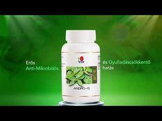 Az Andrographis paniculata az ájurvéda egyik nagyra értékelt gyógynövénye. Android