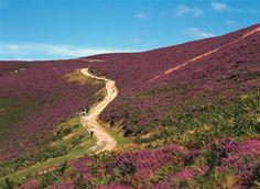 pics wales   Snowdonia National Park