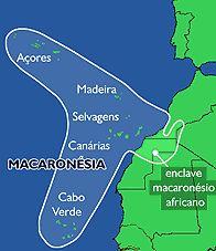 Marmac - Macaronésia