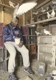 Mike Tyson feeding pigeons...bet those pigeons r scared
