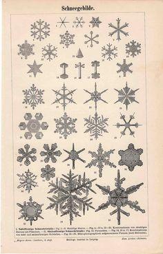 1889 snow flakes original antique weather by antiqueprintstore, $45.00
