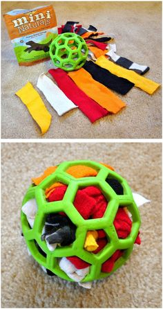 For the Dog that loves to Pull apart Stuffed Animals //